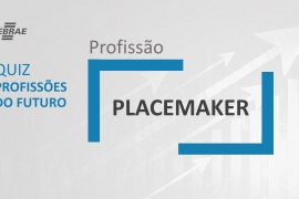 Placemaker – O que faz?
