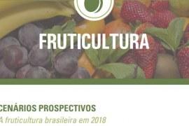 Relatório – Cenários Prospectivos da Fruticultura Brasileira em 2018