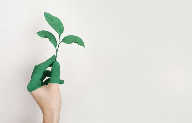 Sustentabilidade nos empreendimentos de beleza