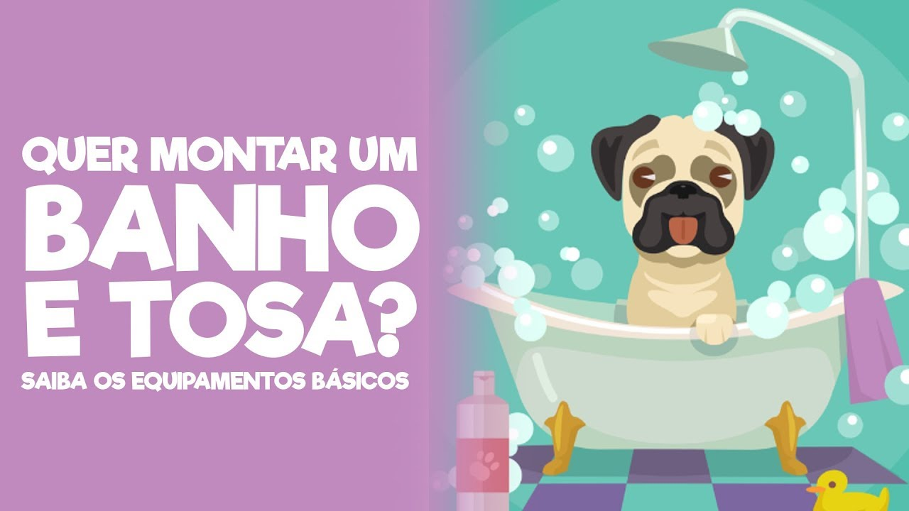 CURSO BANHO E TOSA