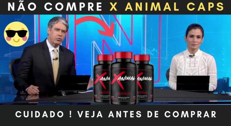 x animal oficial