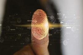 Conheça algumas dicas de tecnologia empresarial