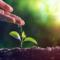 Aspectos introdutórios do direito ambiental