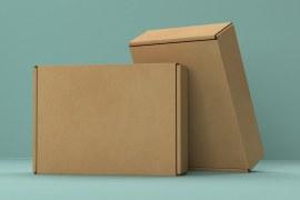 Pandemia e e-commerce: Porta física fechada, janela online aberta