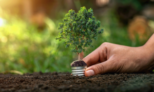 Qual o impacto das energias sustentáveis na sua empresa