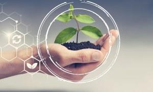 Saiba qual a responsabilidade ambiental do seu empreendimento