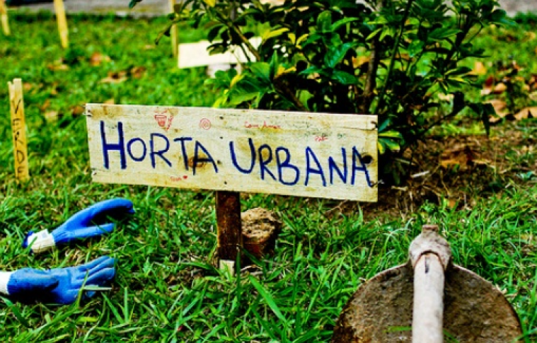 Hortas Urbanas – Valorizar a Terra e o Alimento
