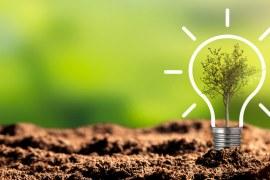 Quais são as campanhas ambientais que podem ser adotadas na sua empresa