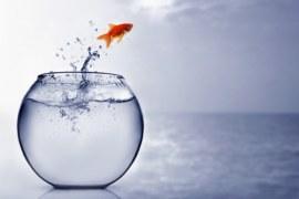 A vida começa no final da sua zona de conforto. Dicas para fazer acontecer!