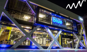 Bluefit: descubra tudo sobre o IPO da rede de academias