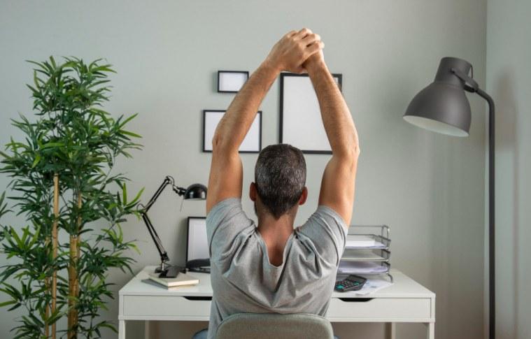 Como decorar seu home office: dicas criativas