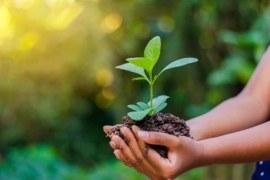 As indústrias e o meio ambiente