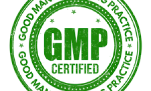 GMP Implementation and Consultation