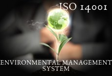 Know Brief About ISO 14001 Certification in Jordan