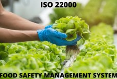 Know-How ISO 22000 Certification in Bahrain Can Help in your Business
