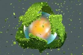 Saiba a importância de investir em sustentabilidade