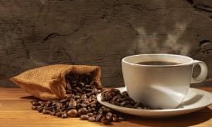 Qual é o clima ideal para a produção de café?